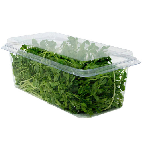 32 oz Top Seal Multi-purpose Clamshell Containers  PLA BDV01388