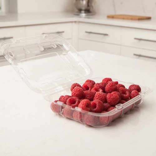 12 oz Vented Berry Containers Sample