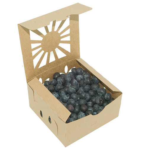 Pint Kraft Paper Clamshell Sustainable Produce Container Sample
