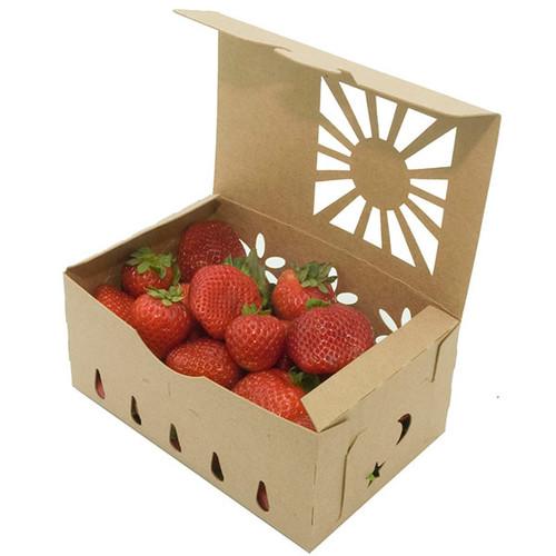 1 quart produce container sample
