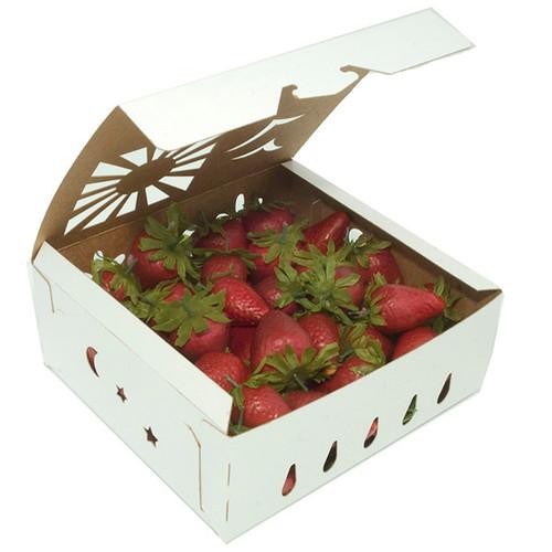 2 quart paper strawberry container samples
