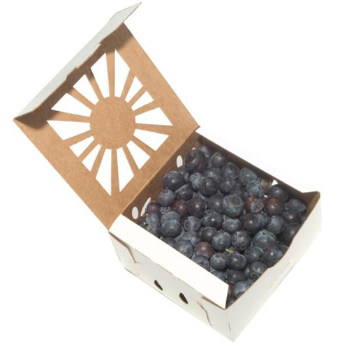 One Pint Paper Blueberry Containers