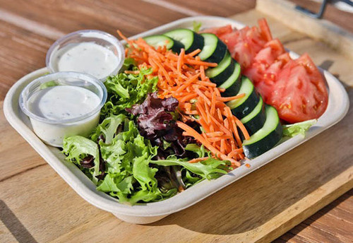 Compostable take out fiber food tray TR-SC-U10