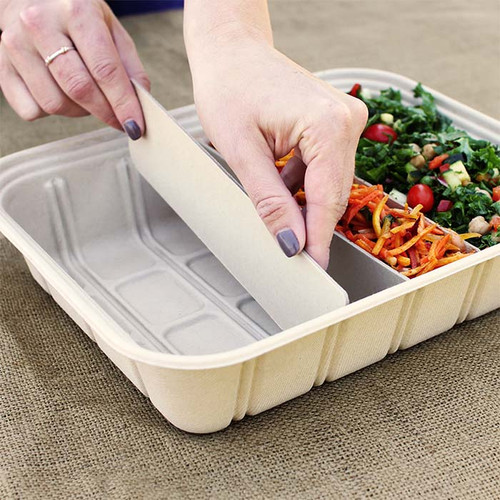 Adjustable Compartment Catering Tray