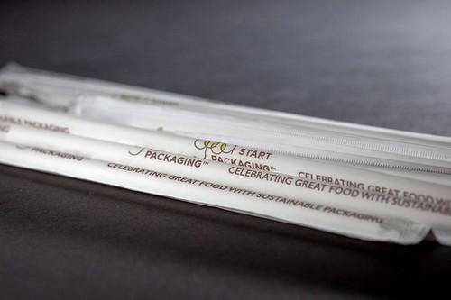 Paper Straw Samples