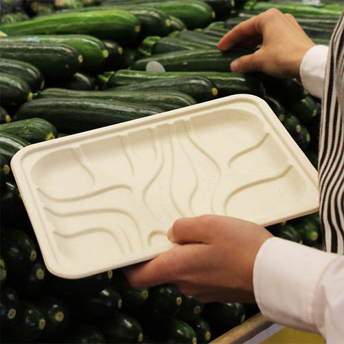Compostable Meat or Produce Tray TR-SC-2S
