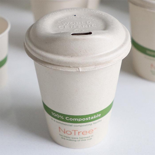 8 oz Compostable sugarcane coffee cup with sip lid