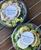 24 oz compostable salad Bowl sample