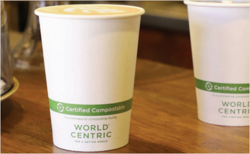 Compostable Paper Hot Cups & Lids