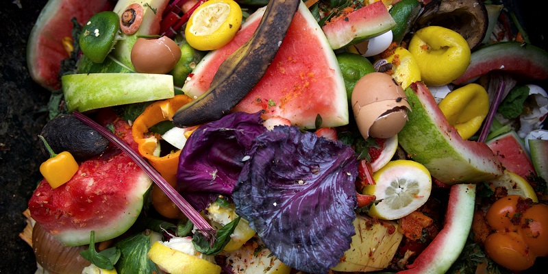 Spoiled fruit and vegetables in compost pile