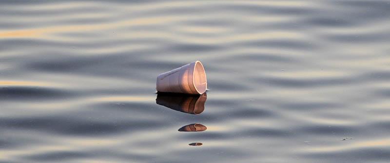 styrofoam cup in ocean