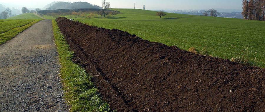 Windrow compost pile