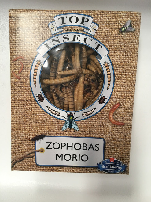 Topinsect Morio worms 1 litre box