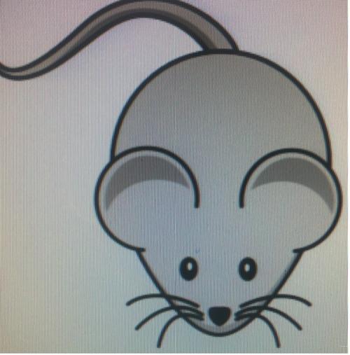 Mouse Fluffs 4-7 g