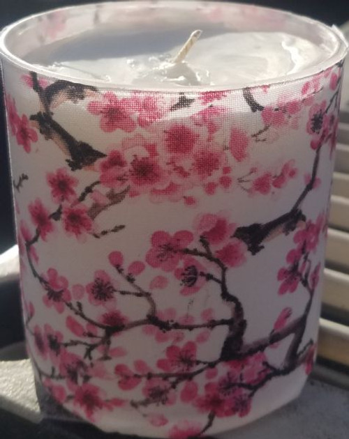 This is Japanese Sakura or cherry blossoms on a white background