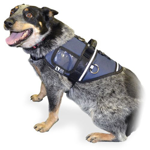 Activ Dog Harness - ACTIV