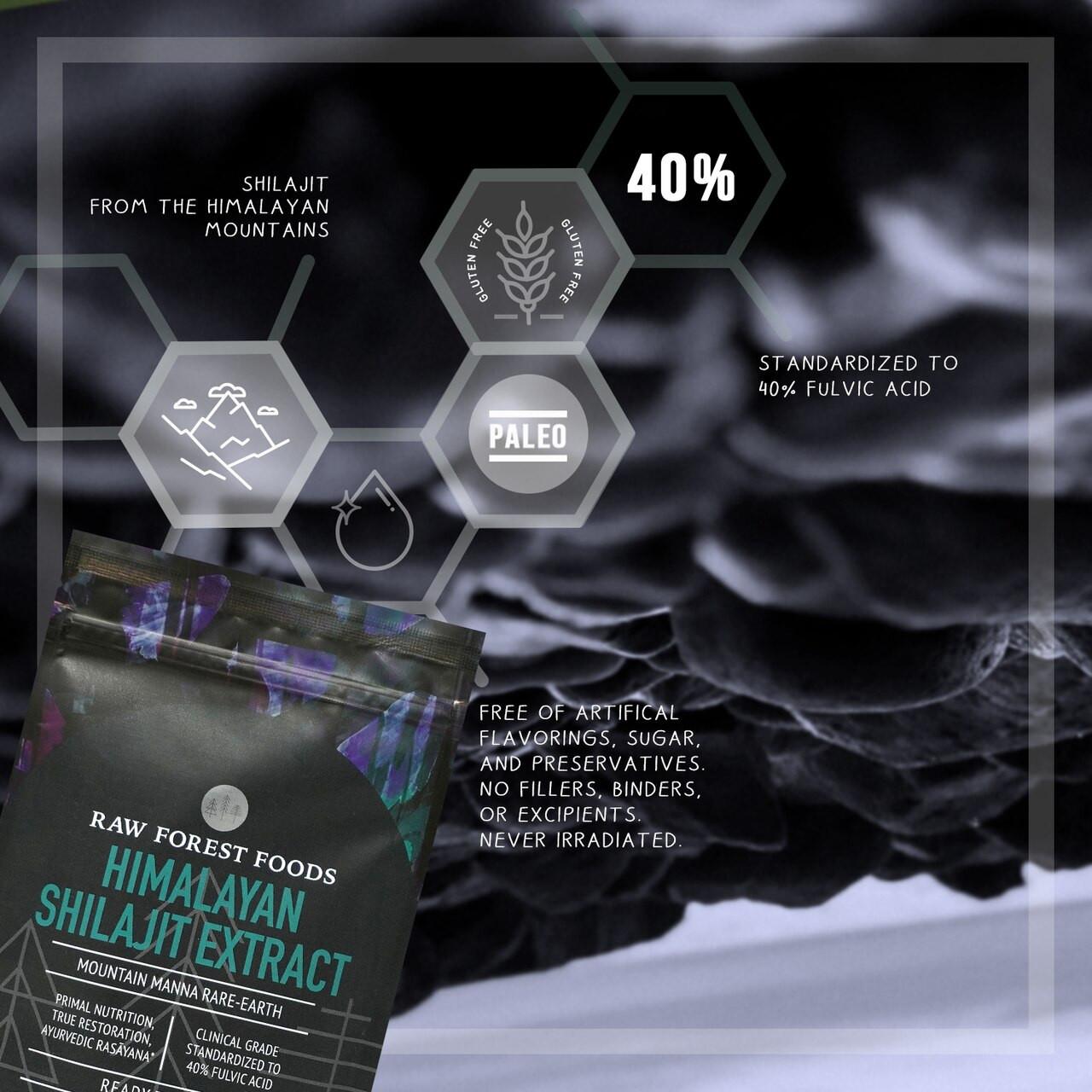 RAW Forest Foods Shilajit Extract Powder — Mountain Mana Rare-Earth — 40percent Fulvic Acid