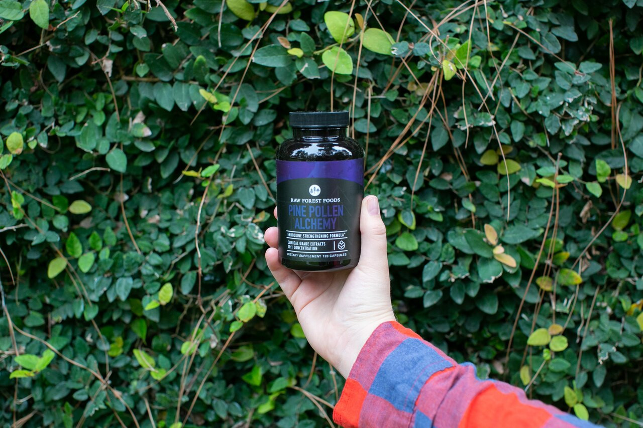 RAW Forest Foods Pine Pollen Alchemy Capsules The Endocrine Formula
