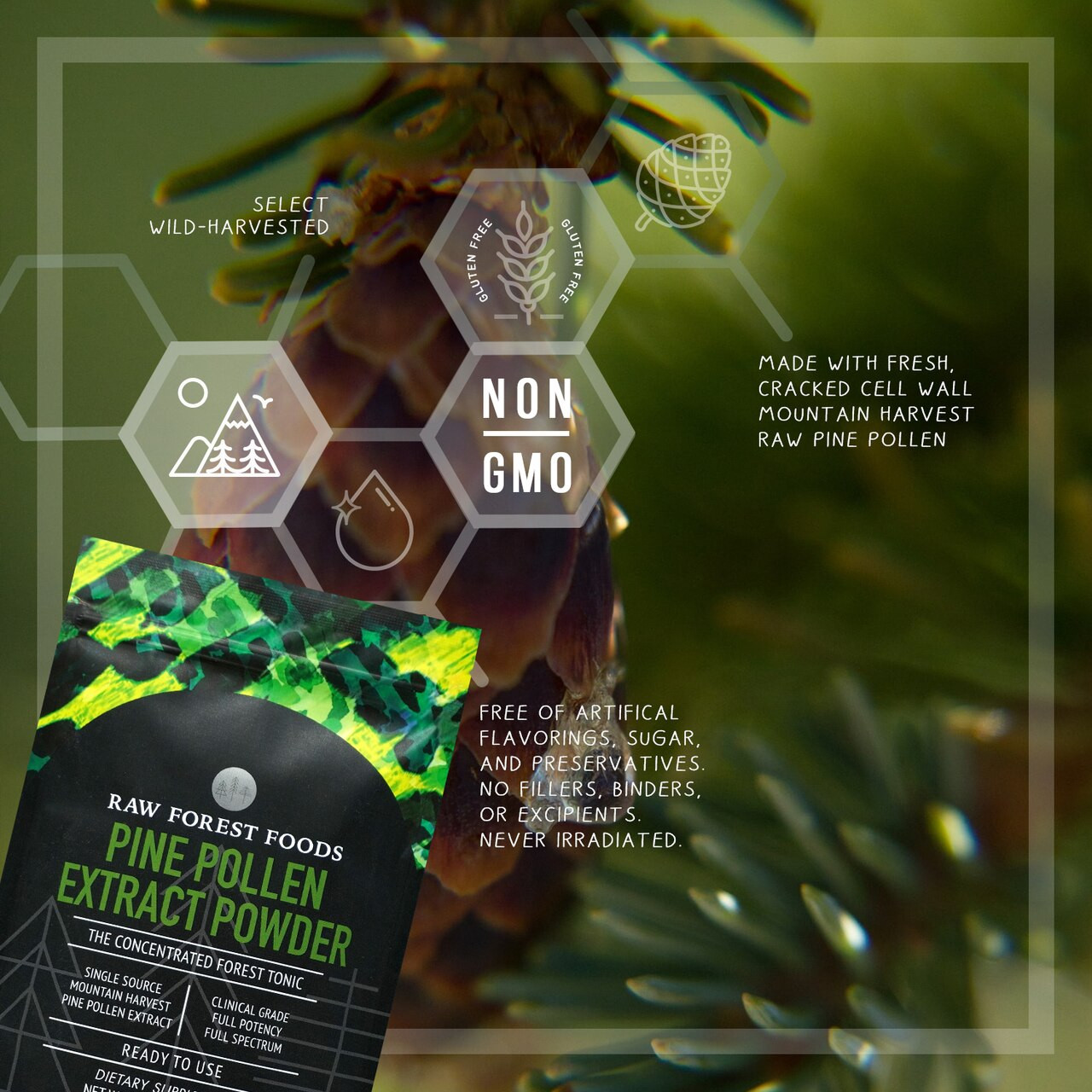 RAW Forest Foods Pine Pollen Extract Powder — Full Potency, Full Spectrum, and Unstandardized — Mountain Harvest