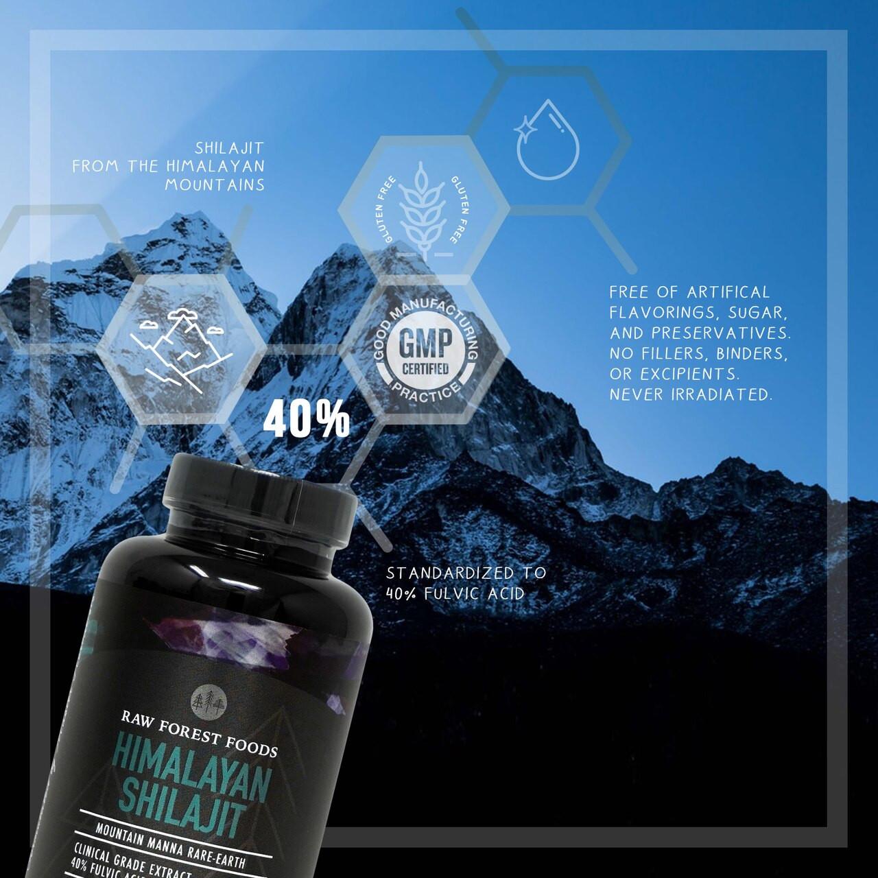 RAW Forest Foods Shilajit Extract Capsules — Mountain Mana Rare-Earth — 40percent Fulvic Acid