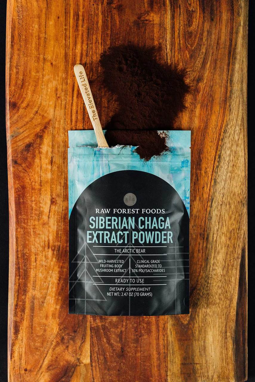 RAW Forest Foods Chaga Extract Powder — Wild-harvested — Ready to Use