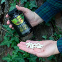 RAW Forest Foods Tongkat Ali Extract Capsules — Enhanced with Piperine — 2001 Extraction