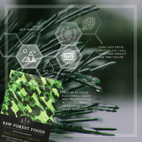 RAW Forest Foods RAW Pine Pollen Chewable Tablets — Single Source — Mountain Harvest