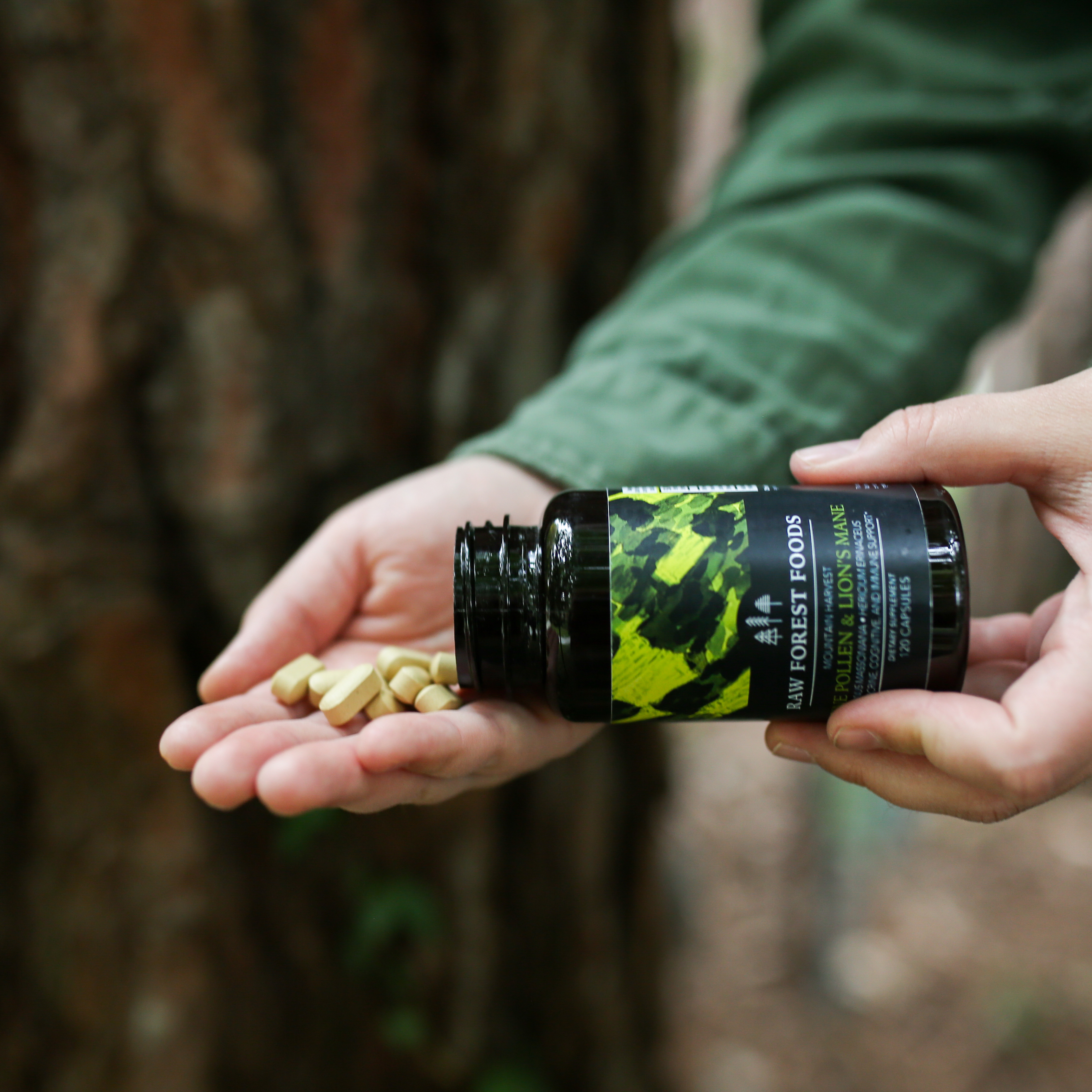Pine Pollen and Lion's Mane Extract Tablets (Mountain Harvest)