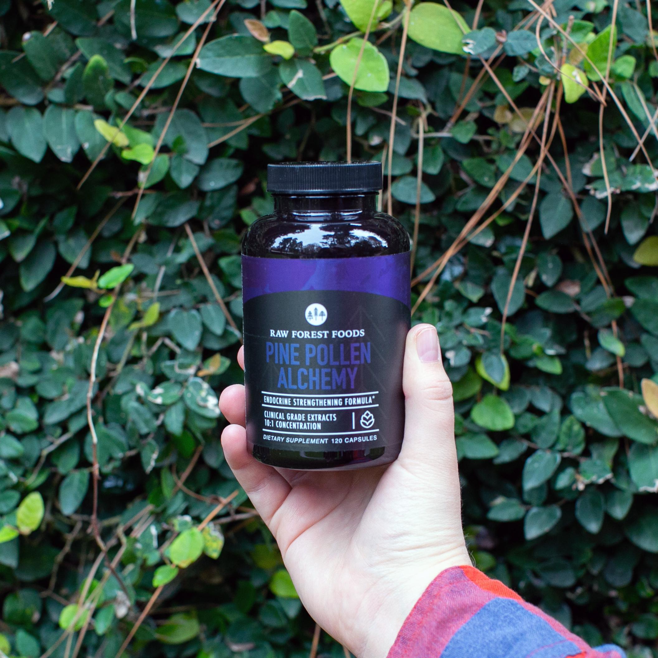 Endocrine Strengthening Formula: The Alchemy of Pine Pollen - Vegan/Vegetarian Capsules