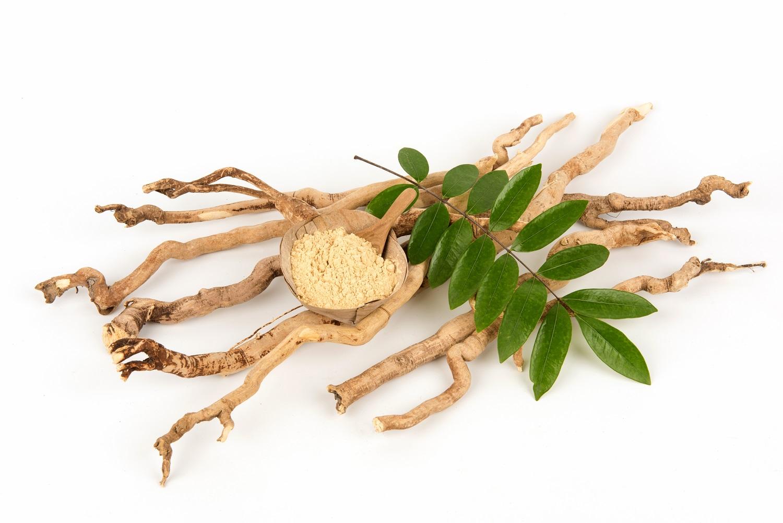 eurycoma-longifolia-tongkat-ali-roots-powdered-extract.jpg