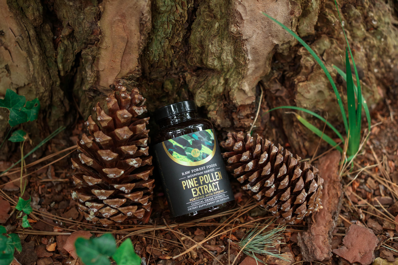Pine Pollen Extract Capsules