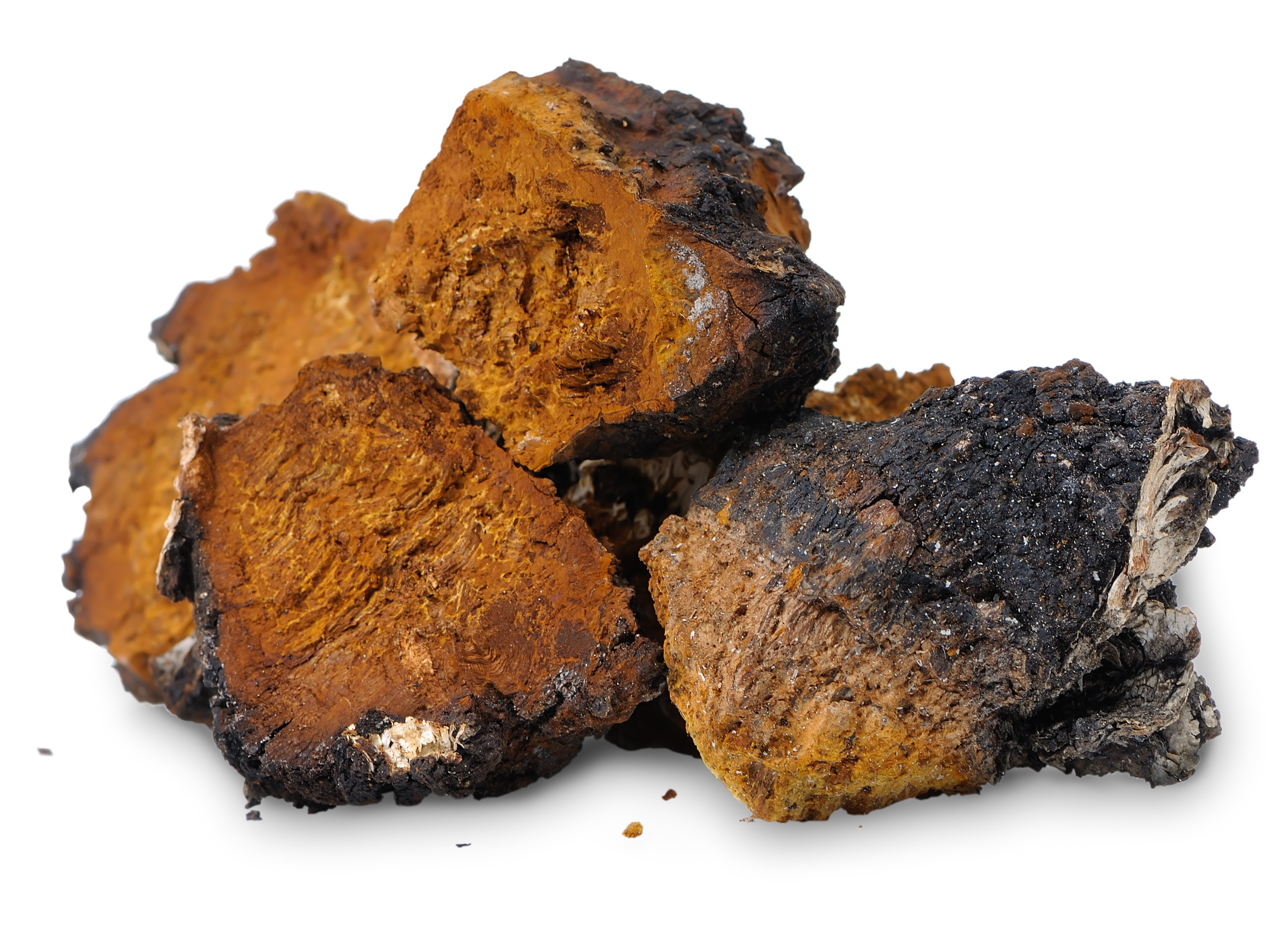 wild-siberian-chaga-powdered-extract3.jpg