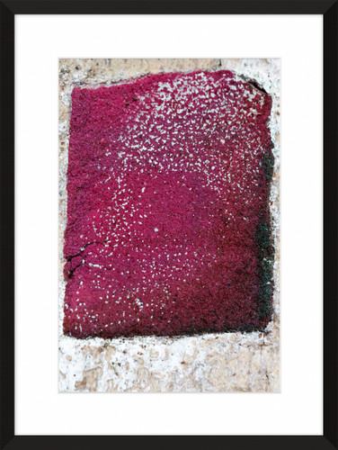 Patina and Decay, Pink II