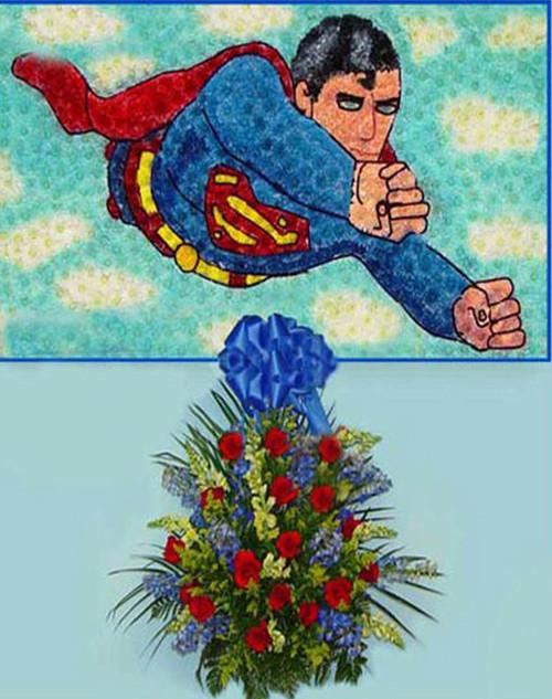 Superman-FNSUP-01