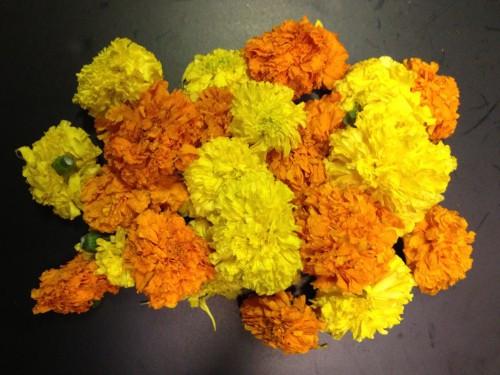 Banthipoolu / Marigolds