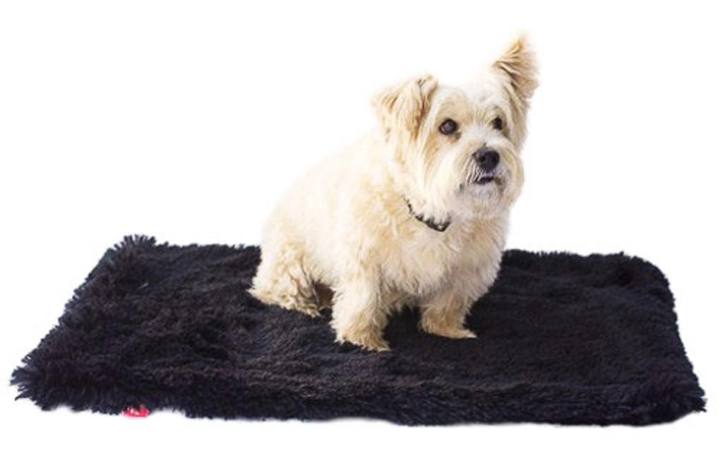 Black Powder Puff Minkie Binkie Blanket