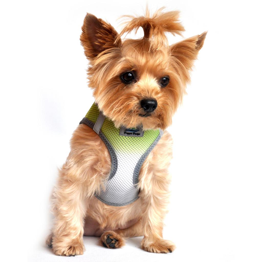 American River Dog Harness Ombre Collection - Limestone Gray