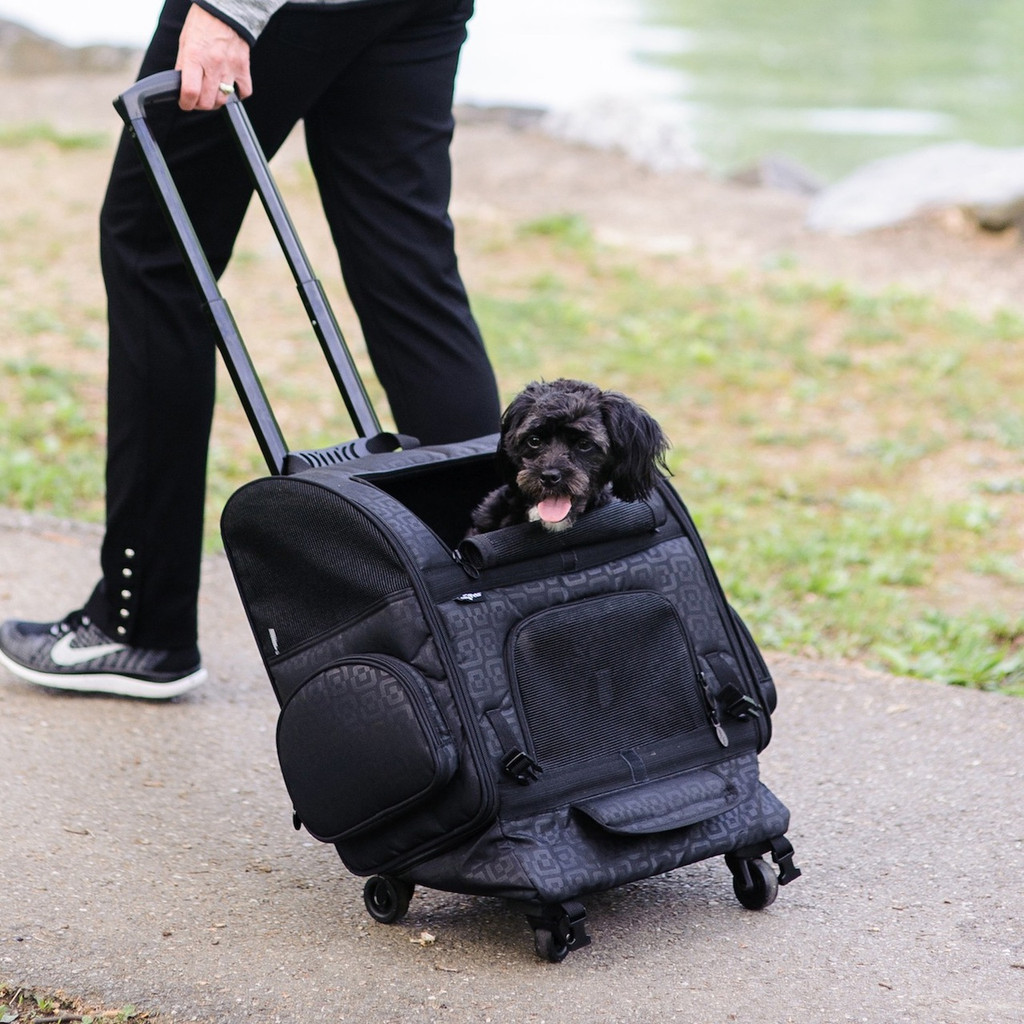 Black Geometric RC2000 Roller-Carrier for Pets up to 20 lbs.