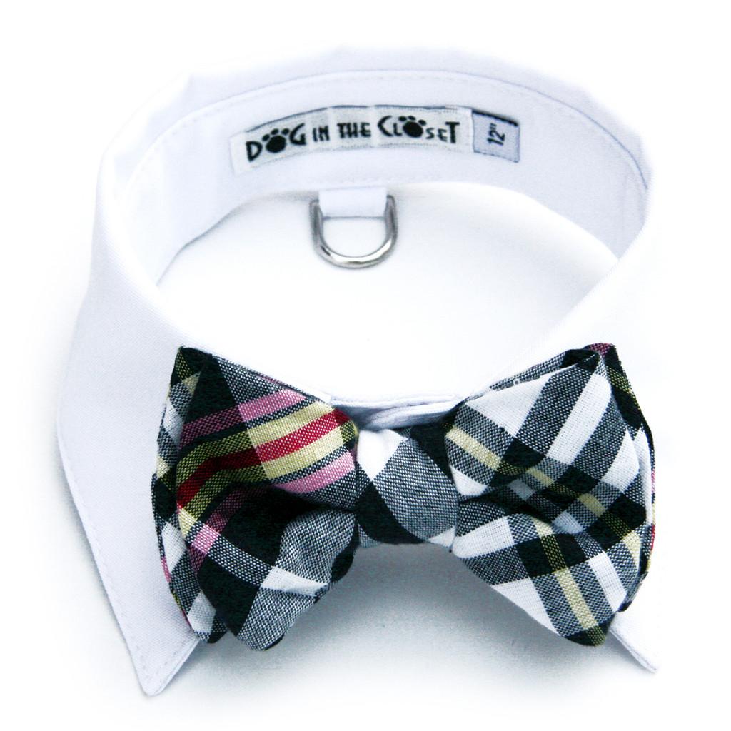 White Shirt Dog Collar with Black & White Madras Plaid Bow Tie