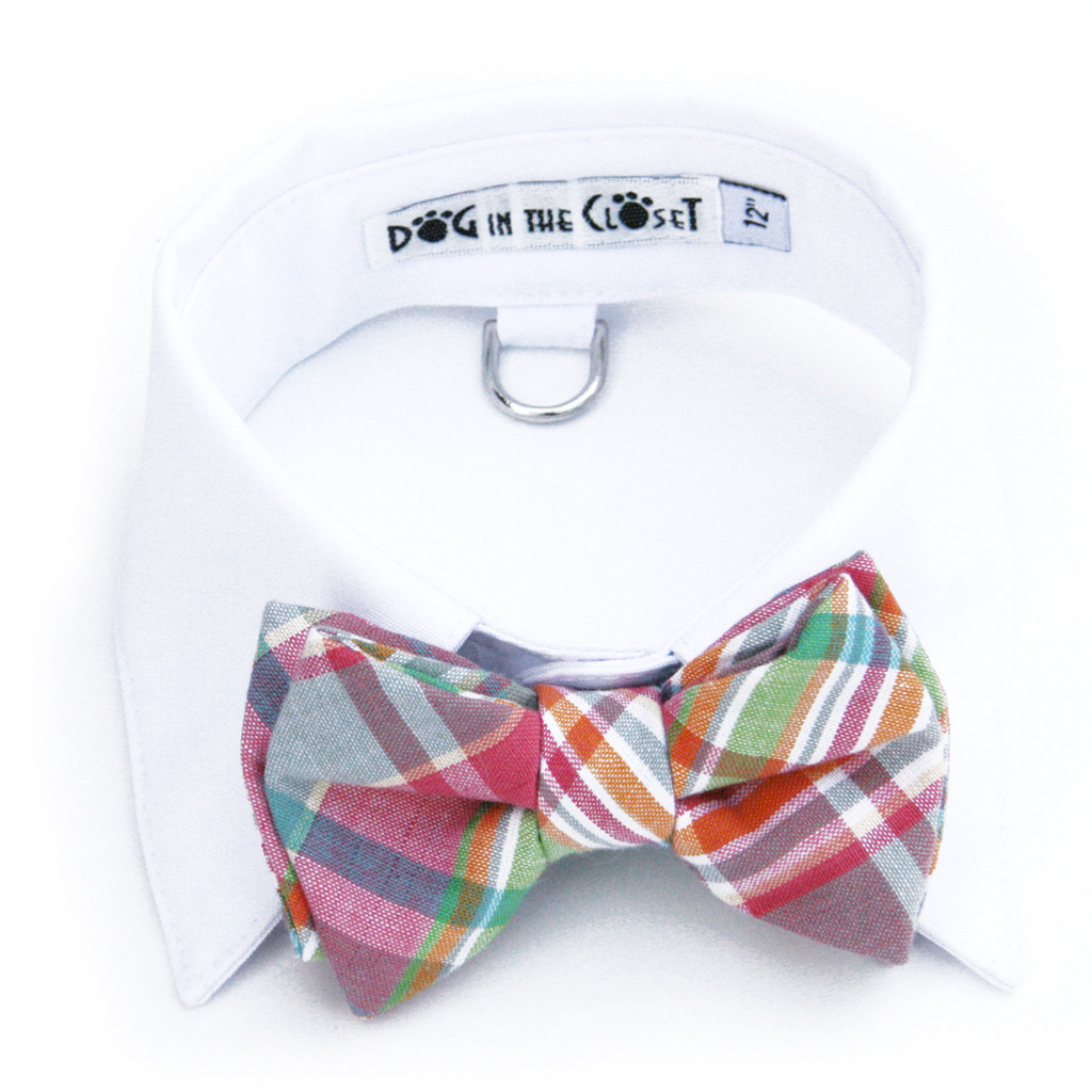 White Shirt Dog Collar with Pastel Madras Plaid Bow Tie