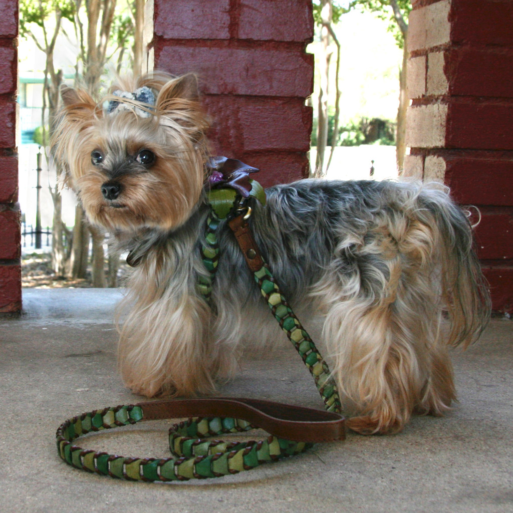 Shades of Green Leather Dog Harness with Purple Flower Attachment