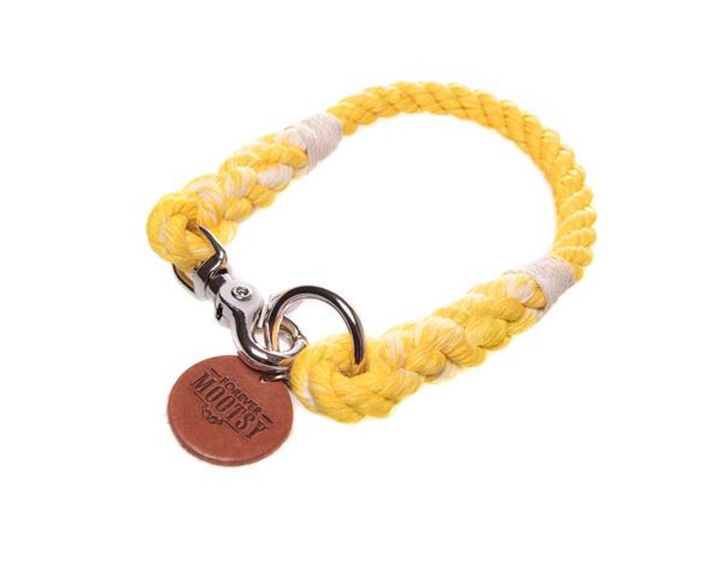 Golden Yellow Ombré Dog Collar