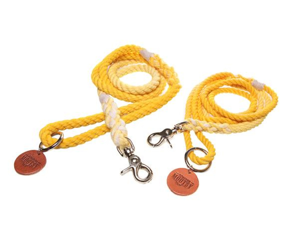 Golden Yellow Ombré Dog Leash