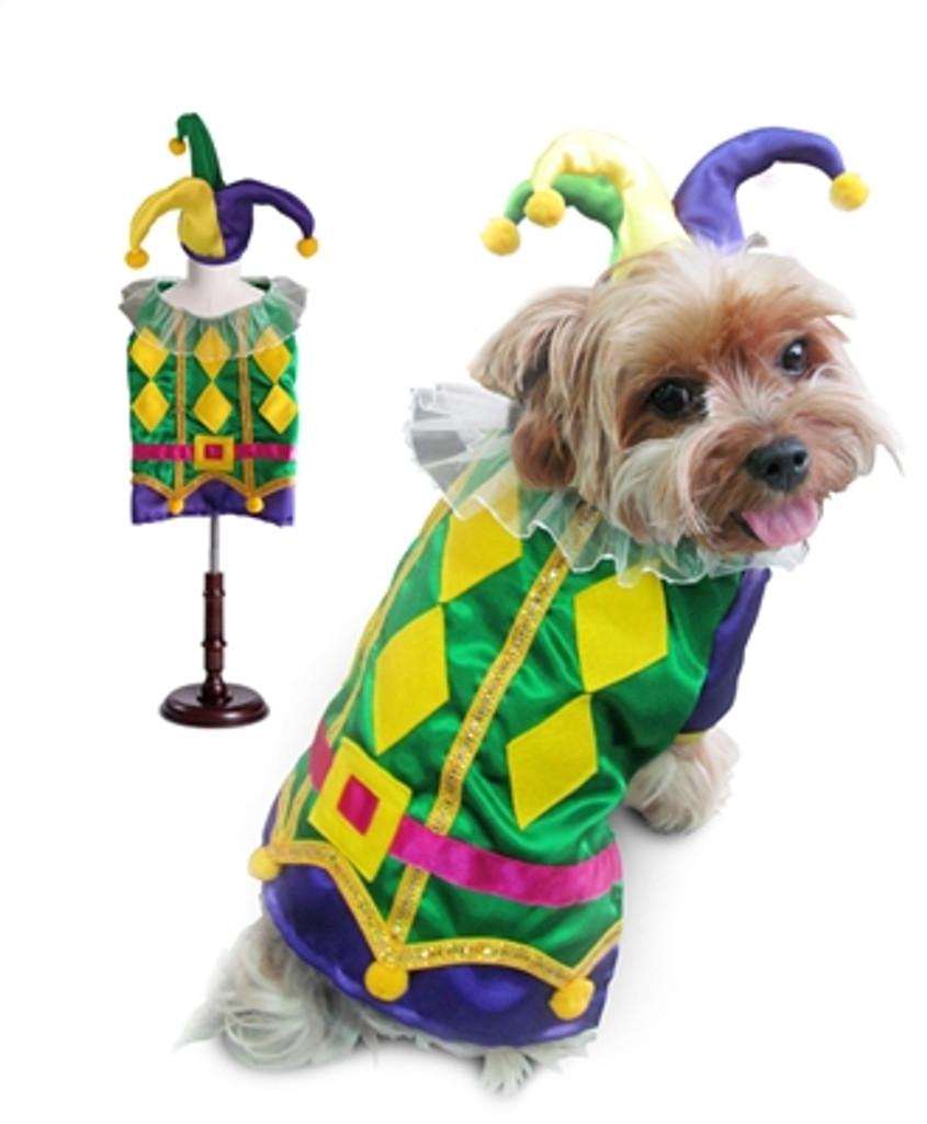 Harlequin Mardi Gras Costume
