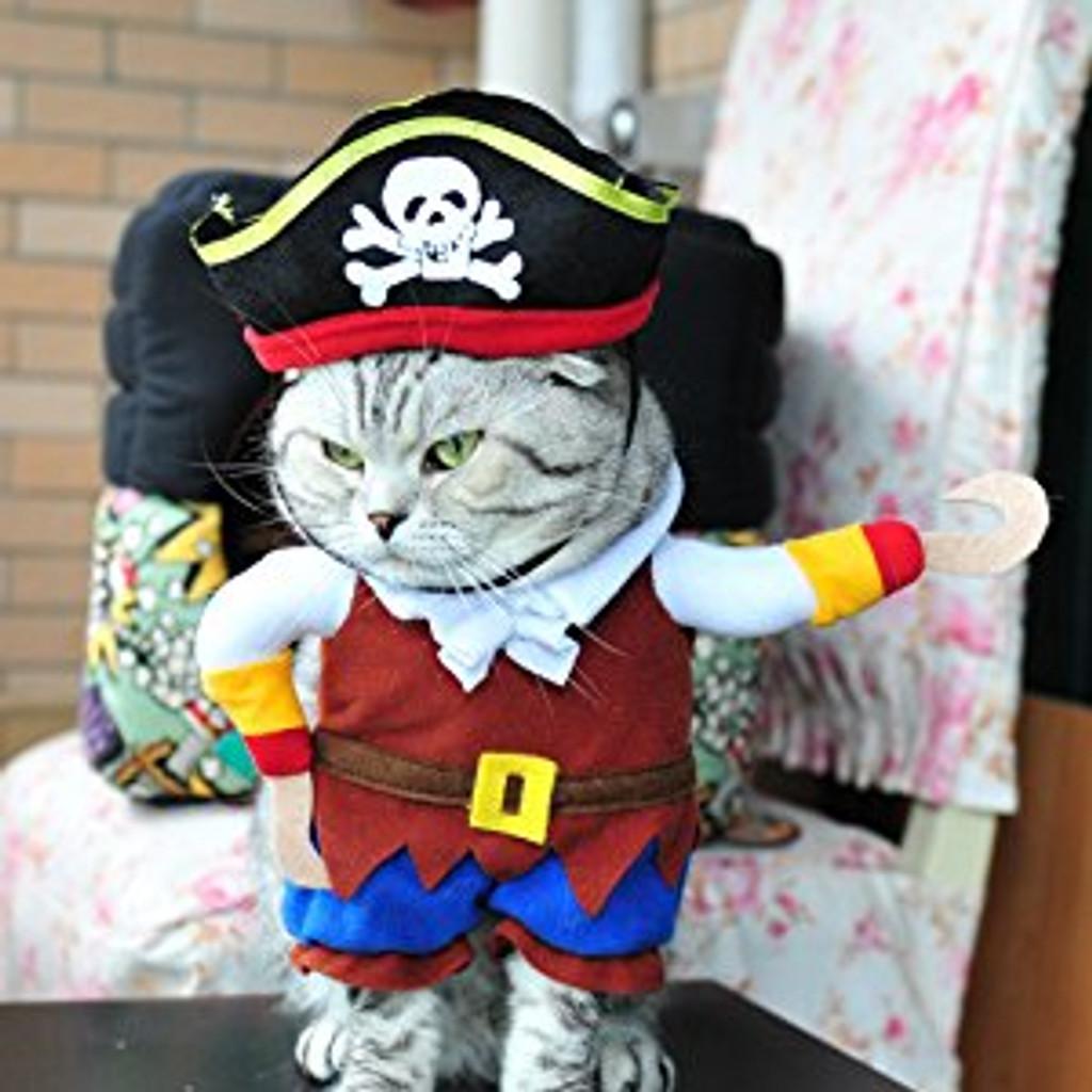 Pirates of the Caribbean Pet Dog Costume