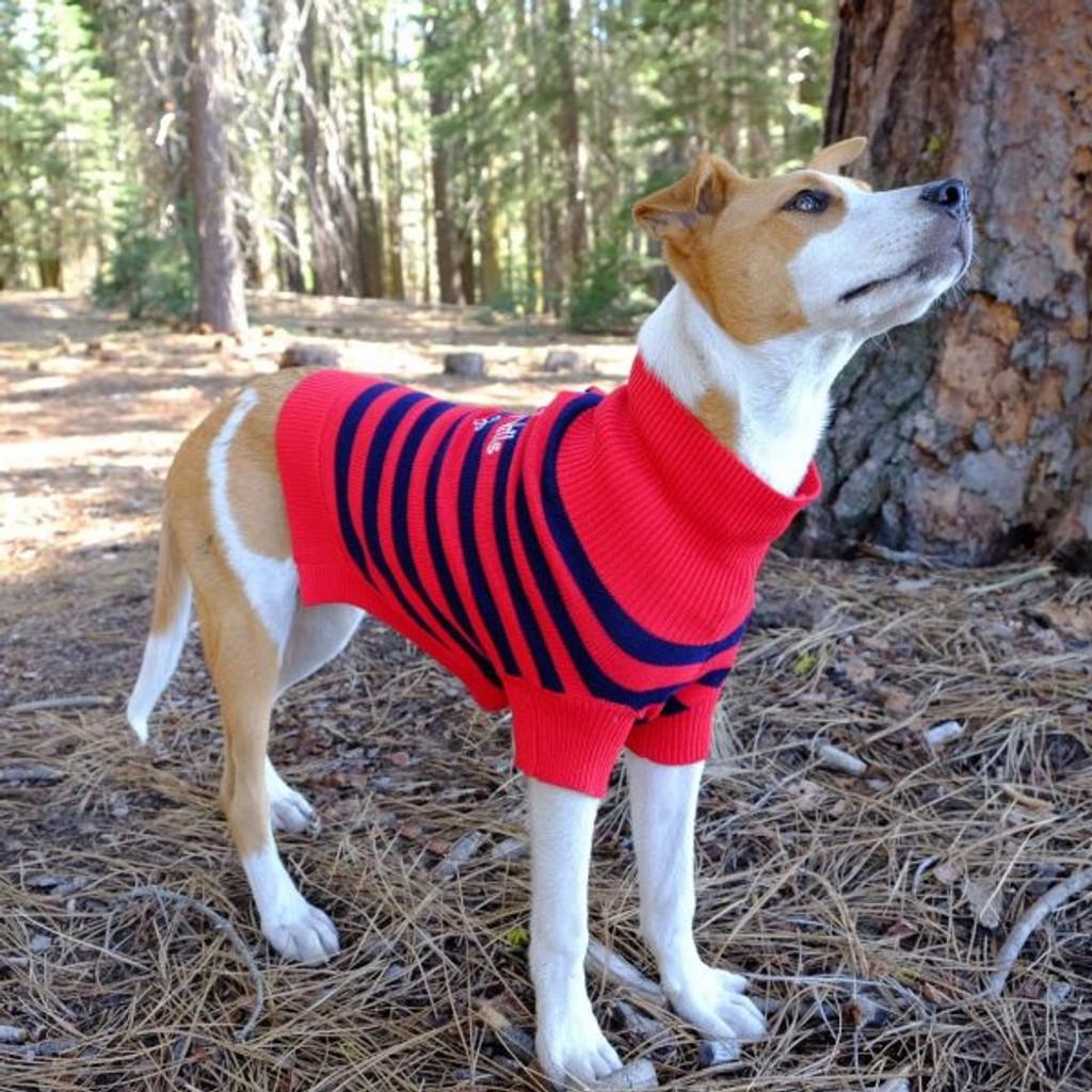 BHD Striped Sweater 3