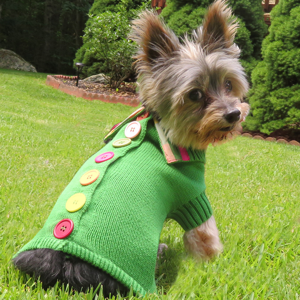 Green Rainbow Button Sweater 4