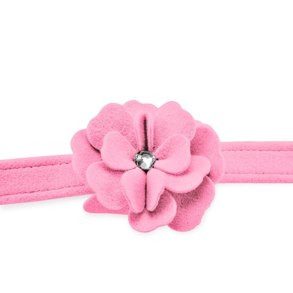 Garden Flower Rose Pink Leash 2