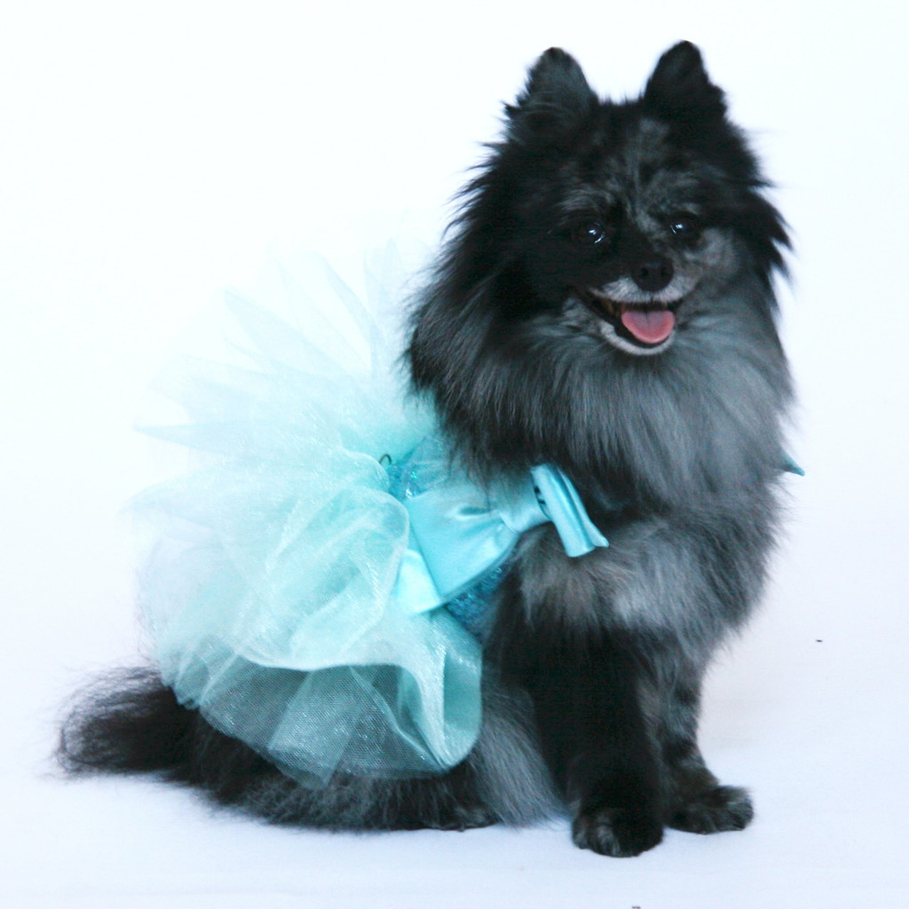 Aqua Tulle and Sequin Party Dress - Size S