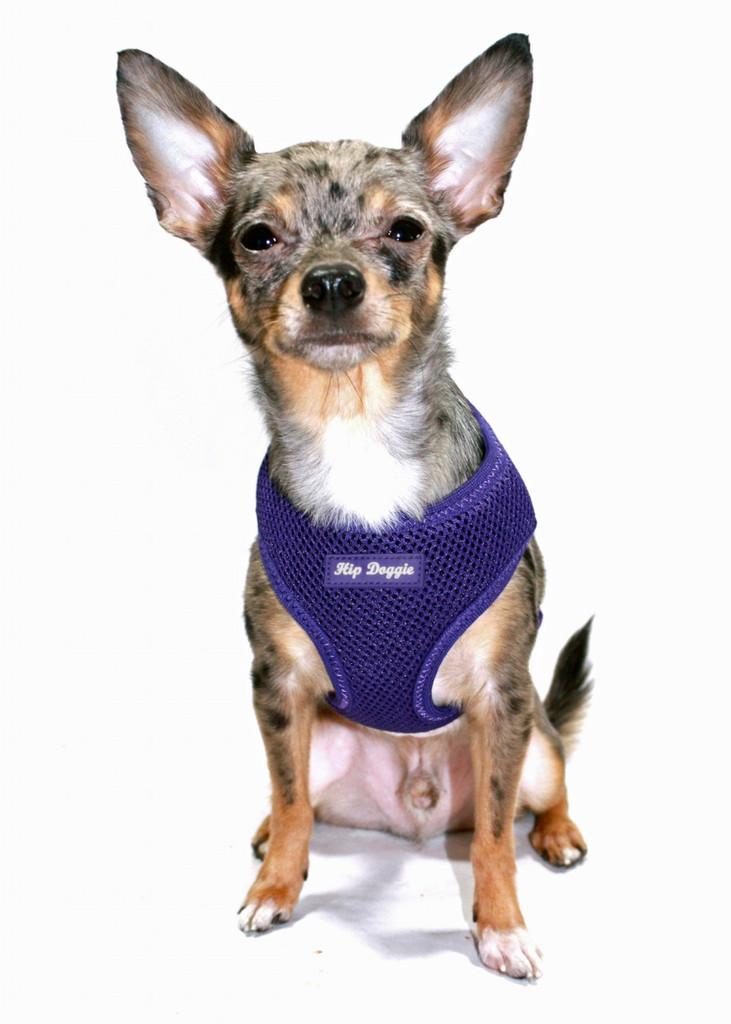 Ultra Comfort Purple Mesh Harness Vest